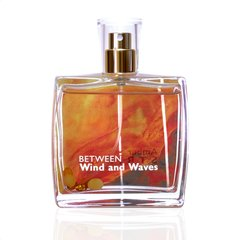 Parfüümvesi Amber Strings Between Wind and Waves EDP meestele 100 ml hind ja info | Meeste parfüümid | kaup24.ee