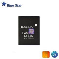 BlueStar Аккумулятор Samsung B3410 S5620 S3650 Li-Ion 1000 mAh Аналог AB463651BE цена и информация | Телефоны и аксессуары | kaup24.ee