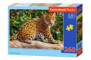 Pusle Castorland Little Jaguar, 260tk