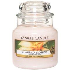 Lõhnaküünal Yankee Candle Champaca Blossom, 105 g