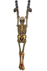 Halloween dekoratsioon - skelett