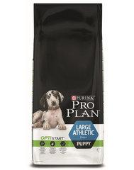 Kuivtoit koertele Pro Plan Puppy Large Athletic, 12 kg
