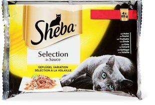 Konserv kassidele SHEBA, linnulihaga komplekt, kotid 4 x 85 g