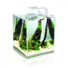 Akvaarium SHRIMP SET SMART 2 20 White