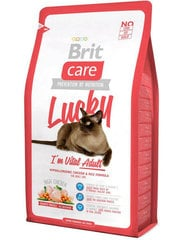Kuivtoit kassidele Brit Care Cat Lucky I'm Vital Adult, 2 kg