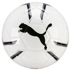 Jalgpall Puma Pro Training 2 MS