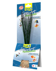 Kunsttaimed Tetra Hairgrass