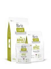 Brit Care Adult Small Breed Lamb & Rice 1 kg hind ja info | Brit Care Adult Small Breed Lamb & Rice 1 kg | kaup24.ee