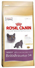 Kassitoit Royal Canin British shorthair 4 kg