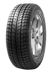 Fortuna WINTER 205/70R15C R 106