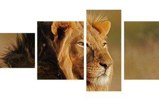 Neljaosaline maal, lõvi