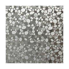 Fotokleebis D-c-fix 90x200 cm, läbipaistev цена и информация | Декоративные наклейки | kaup24.ee
