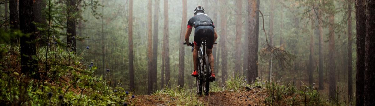 Kuidas valida jalgratast metsasõitudeks?